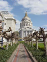 San Francisco City Hall through the trees in the Court Yard