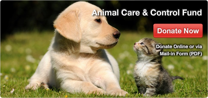 animal care & control fund
