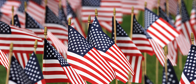 American Flags on a field of green grass
